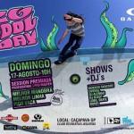 Big Pool Day, Caçapava - SP, 2014  Realização: Posso! Skateboards e Estúdio Play Marketing